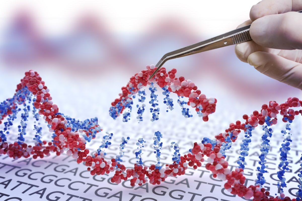 Genetic engineering, GMO and Gene manipulation concept. Hand is inserting sequence of DNA.  3D illustration of DNA.